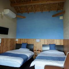 客室/自然素材/左官仕上げ/犬/ペットと泊まる 海をモチーフにした客室。壁の仕上げは、石…