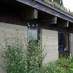 版築/土壁/版築工法/版築土壁/木造平屋/片流れ/... 版築工法で出来た陶芸工房。内も外もこの土…