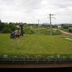 草屋根/片流れ屋根/薪ストーブ/煙突/木造平屋/屋根の上/... 段々畑の上段にあるこの場所で「草屋根に上…