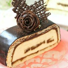 誕生日/バレンタイン/料理/ケーキ/手作りケーキ/手作り/... バレンタインに主人に贈ったティラミスケーキ