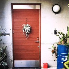 NO GREEN NO LIFE/ドラム缶/キセログラフィカ/チランジア/玄関 我が家の玄関。キセロがメイン❤️