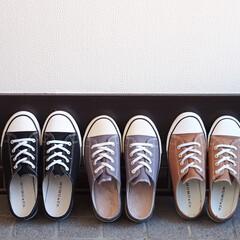 しまむら/スニーカー/プチプラ/レディース/ファッション雑貨/靴 ファッションクリエイターで人気ブロガーの…