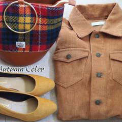 秋ファッション/秋/ファッション/しまむら/プチプラ 秋色アイテム、集めました。 「しまむら」…