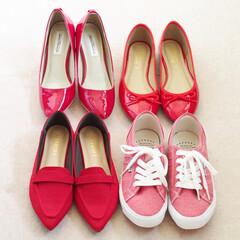 しまむら/靴/パンプス/バレエシューズ/スニーカー/プチプラ/... 赤の靴をコーデの差し色にするのが好き。タ…