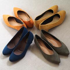 しまむら/パンプス/プチプラ/ファッション/レディース/靴 秋色パンプス。イエロー以外の3足は「しま…
