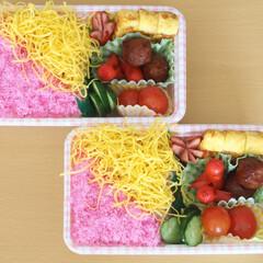 お弁当/昼ごはん/おうちごはん/LIMIAごはんクラブ/簡単弁当 私が住んでいるところでは、桜が見頃なので…