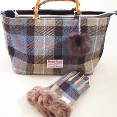 冬/手袋/しまむら/ハリスツイード/冬小物 しまむらと「ハリスツイード」のコラボ商品…
