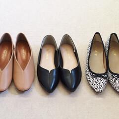 しまむら/パンプス/フラットパンプス/しまむら購入品/靴/プチプラ/... しまむらで最近購入したフラットパンプスで…(1枚目)