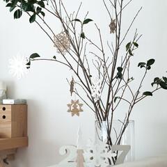 クリスマスデコ/ニトリ/ツリー/枝ツリー/枝物/山茶花/... なんちゃってクリスマスデコ。 例年ならば…