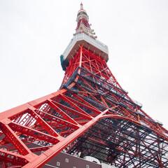 わたしのGW/東京観光/はとバス/東京タワー/景色 はとバスに乗って東京観光。屋根の無い2階…