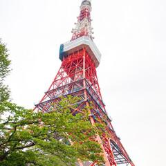 わたしのGW/東京タワー/東京観光/はとバス/ドライブ はとバスで巡る東京観光ドライブツアーへ。…