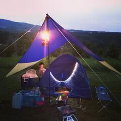 「キャンプ用のタープ4000円とテープ型の…」(1枚目)