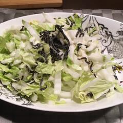 白菜/塩昆布和え 白菜 塩昆布 シーザードレッシング ごま…