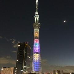 スポット/東京/夜景/スカイツリー/おでかけ 久々の投稿〜 先日、某所より撮影したスカ…