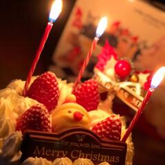 クリスマスケーキ/クリスマス 今年は買ってしまった(๑˃̵ᴗ˂̵)