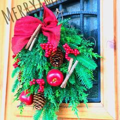クリスマスリース/クリスマス 去年買ったフェィクリース