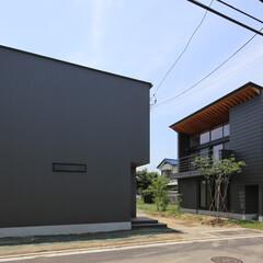 住宅/建築/インテリア/Trilogy/三部作/南の家/... Trilogy - 南の家  設計:プラ…