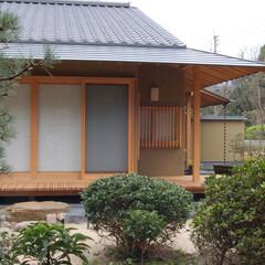 住まい/建築/建築家/和風住宅/庭/濡れ縁 庭と共に在る…唐津の家 伝統的和風の佇ま…