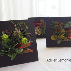 フラワーインテリア/多肉植物/グリーンインテリア/グリーンインテリア投稿コンテスト レストランの装飾のオーダーで、おつくりし…