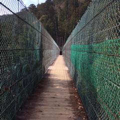 お寺参り/山登り/ドライブ/吊り橋/フォロー大歓迎/風景/... 吊り橋ダッシュすると揺れて刺激的です。ミ…