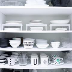 メラミンコップ メラミン 食器 コップ カップ 子供 こども キッズ DESIGN LETTERS デザインレターズ メラミンカップ | Design Letters(コップ)を使ったクチコミ「食器の色はホワイトで揃えています。 食器…」
