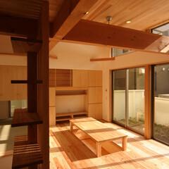 自然素材/狭小/変形/ローコスト/光/風/... 旗竿状の敷地に建つ住宅。 地形と南東方向…
