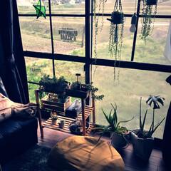 田舎暮らし/多肉植物/グリーンネックレス/グリーン/DIY/雑貨/... ダイソーの木材で窓枠作成。カーテンレール…