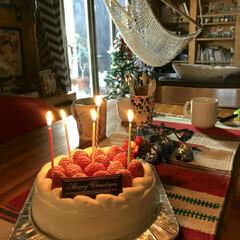 クリスマスケーキからのツリー 家族や親切を呼んでのクリスマス会、食事が…