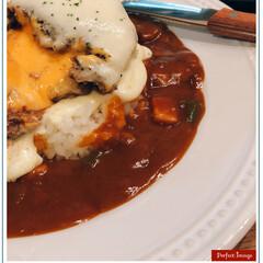 美味しかった❣️/男子ごはん/チーズハンバーグカレー/おうちごはん/フード 今日の夕飯❣️ チーズハンバーグカレー🍴…(1枚目)