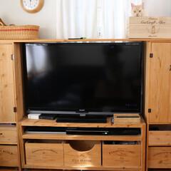 DIY/テレビボード/リビングボード/足場板/リビング/収納/... 杉足場板で作った収納たっぷりのテレビボー…