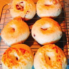 たこ焼き/簡単ベーグル🥯/おうちごはん/うちの定番料理 夕食にたこ焼きのリクエスト(⌒-⌒; )…