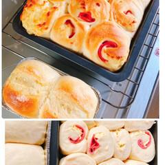 ミニトマト🍅/ゴーヤ🌱/シュガートップ/ハムとチーズのちぎりパン/おうちごはん おはようございます☀  今朝はハムとチー…