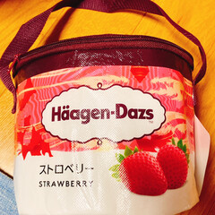 ハーゲンダッツのクーラーBOX/ハーゲンダッツ これ見つけた〜♪( ´▽`)  ハーゲン…