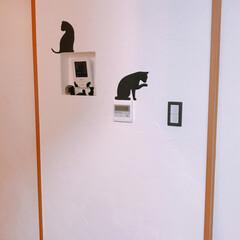 猫シルエット/黒猫/暮らし 犬用のゲートで壁紙がめくれてしまった所を…(2枚目)