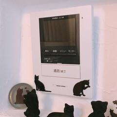 猫シルエット/黒猫/暮らし 犬用のゲートで壁紙がめくれてしまった所を…(3枚目)