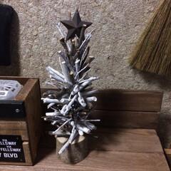 クリスマスツリー/セリア/100均/グルーガン/小枝/男前×ナチュラル/... カブトムシのエサ皿を土台に丸棒を立てて、…