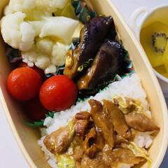 「今日のお弁当🍱 ナスとセロリの葉の炒め物…」(1枚目)