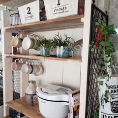 収納棚DIY/ラブリコDIY/ホットクック/ホムセン/DIY/ダイソー ニュー家電のホットクックのためにラブリコ…(1枚目)