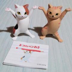 猫派/ネコ/猫好き/猫雑貨/面白い/可愛い/... Facebookのネコグッズグループで、…