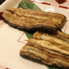 白焼き/鰻重/横浜/鰻/夏の思い出/外食/... 夏といえば鰻。夏は鰻をたくさん食べます。…