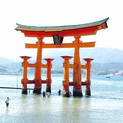 弾丸旅行/陸路 厳島神社❣️ 毎回思い立ったら陸路で移動…