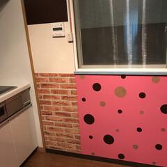 草間彌生風/DIY/インテリア/キッチン ピンクの壁紙の上にブラウンとグレーの壁紙…