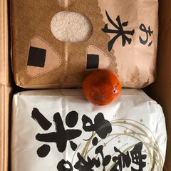 新米/オキザリス 北海道から 新米 5kg❎2 届きました…