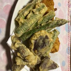 天ぷら/フード 食べる前に 写すんだった!  残ったら天…