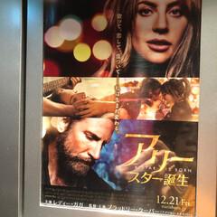 映画鑑賞 アリーは、最近観た映画 2枚目は、昨年末…