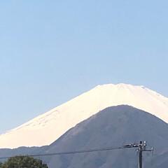 湯河原梅林/富士山🗻/紅梅白梅/椿 ⓵  9.10日と、マイシスターが♨️&…
