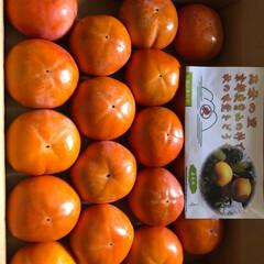 京都鹿背山の柿 12月に 届く予定が、今月末に 以前 い…