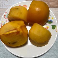 ハウス柿 ☀️おはようございます😊  彩の国、37…(2枚目)