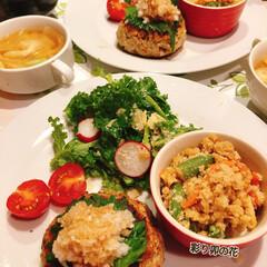 おから/身体に優しい料理/腸内環境/おから豆腐バーグ/おうち/グルメ/... おからや塩麹を使った腸に優しいご飯