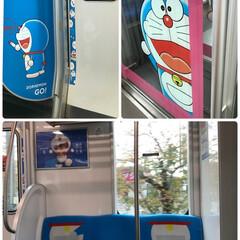 電車/風景 🌈🌴🌺🦚🍂🍁🌾🍄  o((=゜ェ゜=))…